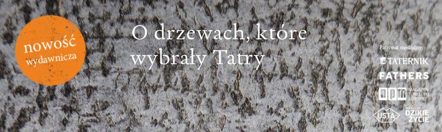 banner-drzewa-d.jpg