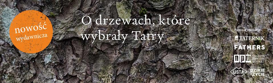 banner-drzewa-b.jpg